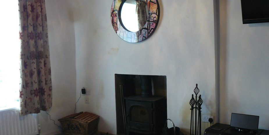 Living room with multi-fuel stove