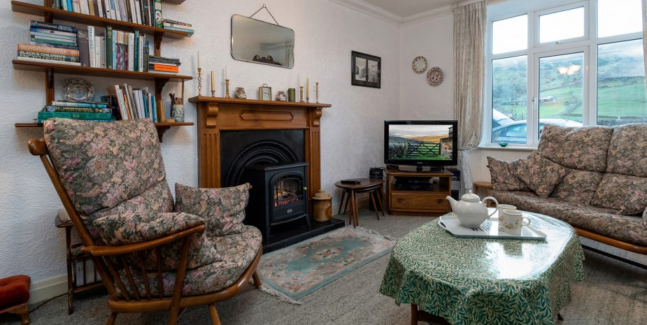 Living room with electric fire